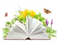 2 апреля - Международный день книги