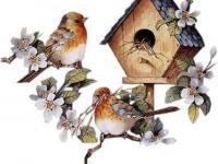 1 апреля - Международный день птиц.
